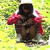 山ガール野ション2☆